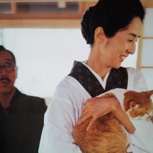 香川京子の画像 p1_17